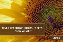 Webinarium Kim & Jim show: I bought bees. Now what? 2016