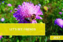 Let's Bee Friends 2017